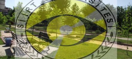 Siirt Üniversitesi Besyo 2017 Online Kayıtları Başladı!